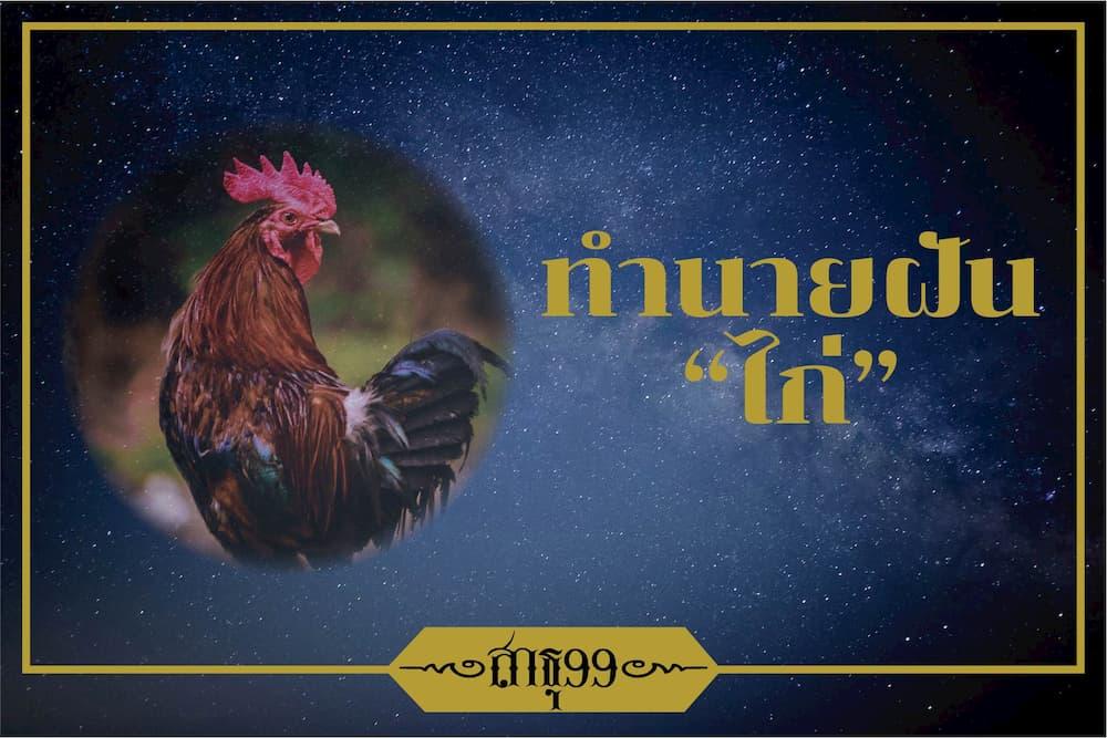 ฝันเห็นไก่